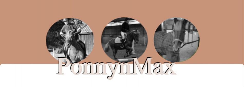 ponnynmax